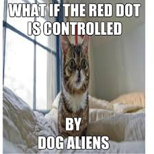 Cat Alien Meme - dog aliens attack cat by belmin begic1 meme center