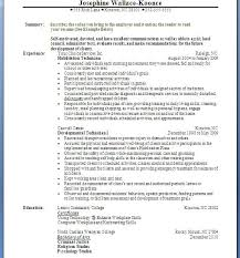 Combination Resumes Examples by Combination Resumes Examples