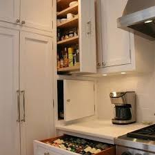 Spice Cabinets With Doors Spice Rack Design Ideas