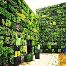 vertical gardens 20 excellent diy exles how to make lovely vertical garden