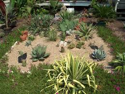 fine cactus garden ideas 47 together with house plan with cactus