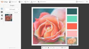 create a color palette picmonkey create color palette