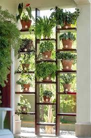plante pour cuisine etagere pour plantes d interieur prepossessing cuisine idées