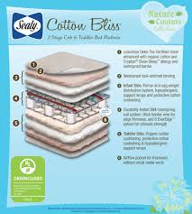 How To Clean A Crib Mattress by Sealy Nature Couture Cotton Bliss 2 Stage Infant Toddler Crib