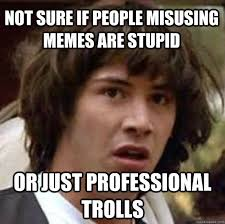 Memes Are Stupid - not sure if people misusing memes are stupid or just professional