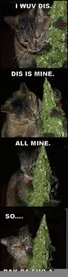 Cat Christmas Tree Meme - just a cat and her christmas tree meme guy