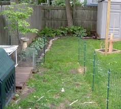 temporary dog fence ideas with 5 type easy roy home design