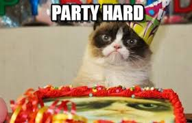 Party Hard Memes - party hard grumpy cat birthday meme en memegen