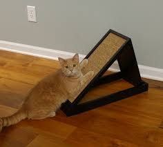 Cat Scratcher 10 Best Cat Scratching Posts Ever Cats Are On Top
