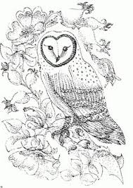 realistic animal coloring pages free realistic owl online coloring page for adults animal