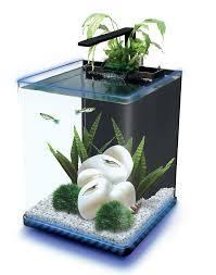 Aquarium For Home Decoration Aquarium Home Decor Fluval Spec V Aquarium Kit In Black To The