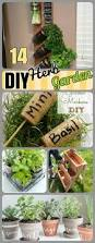 Indoor Spice Garden by 14 Diy Herb Garden Ideas For Vertical Indoor Gardening Diy Craft