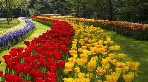 Most Beautiful Gardens In The World Keukenhof The Most Beautiful Gardens In The World Tedy Travel