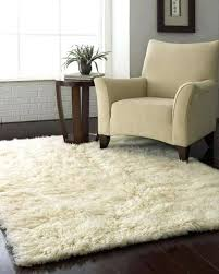 Home Goods Area Rugs Attractive Rugs At Homegoods 15 Photographs Home Rugs Ideas