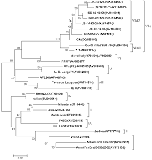 viruses free full text effects of the hn antigenic difference