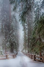 1190 best winter images on pinterest winter snow snow and winter
