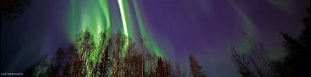 anchorage alaska northern lights tour fairbanks northern lights tours our guide to the best tours