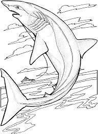 free coloringpages fish ocean sharks