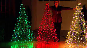Outdoor Lighted Trees Home Design 81 Outstanding Outdoor Tree Decorationss