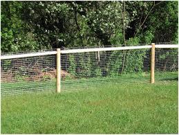 backyards enchanting backyard dog fence backyard dog fence
