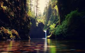 wallpaper tumblr forest forest waterfall wallpapers pictures photos images tumblr