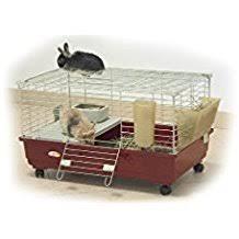 gabbie per conigli nani usate it gabbie per conigli nani