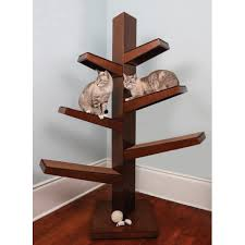 catarina cat tree
