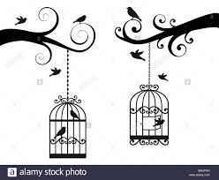 ornamental tree branches with birdcage and birds stock photo