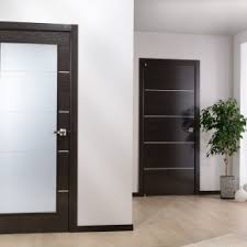Modern Glass Interior Doors Rummy Modern Interior Doors For Home Design And Decorating