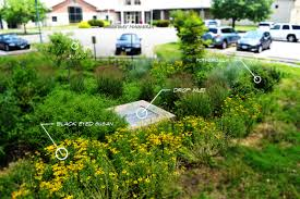 online yard design tool u2013 alliance for chesapeake
