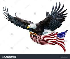 Painting A Flag Digital Painting Bald Eagle Flying Carrying Stock Illustration