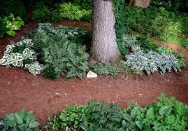 Shady Garden Ideas Garden Design Ideas Small Shady Gardens The Garden Inspirations