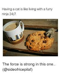 The Force Is Strong With This One Meme - 25 best memes about force is strong in this one force is