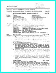 data scientist resume arieli me wp content uploads 2017 12 chief scienti