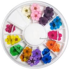 details about 12 color real dry dried flower for 3d uv gel acrylic
