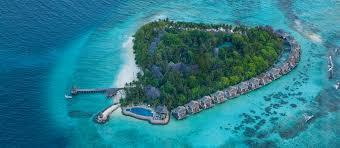 five star tropical resort in maldives vivanta by taj coral reef