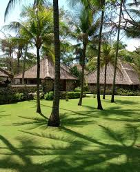 oberoi hotel bali u2014 out of the office