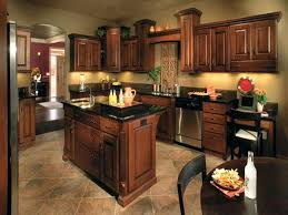 dark brown kitchen cabinets with stainless steel appliances light