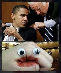 Very Funny Meme - very serious business memebase funny memes
