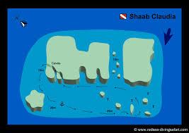 red sea diving safari marsa alam diving