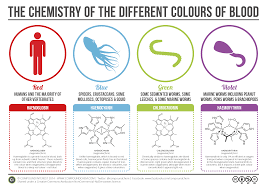 Shades Of Purple Chart by Compound Interest The Chemistry Of The Colours Of Blood
