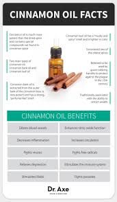 cinnamon oil 10 proven benefits and uses dr axe