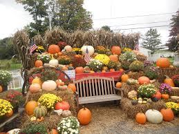 autumn pumpkin wallpaper fall flowers and pumpkins wallpaper smokescreen