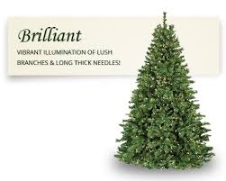 dunhill fir prelit tree christmas lights etc
