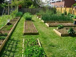 Backyard Vegetable Garden Design Ideas by Backyard Vegetable Garden Plans House Design And Planning