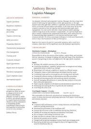 sle project manager resume program manager resume sles free 28 images caign manager resume