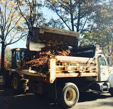 delayed leaf collection in richmond expected to pick back up