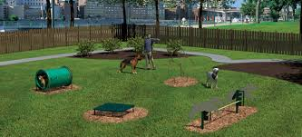 backyard obstacle course for dogs home outdoor decoration