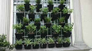 vertical gardening decorative wall hanging planters and flower