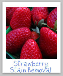 strawberry stain removal guide